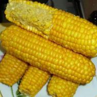 Как отварить молодую кукурузу в мультиварке